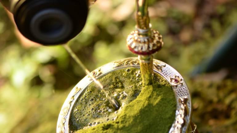 10 benefícios do chimarrão para a saúde